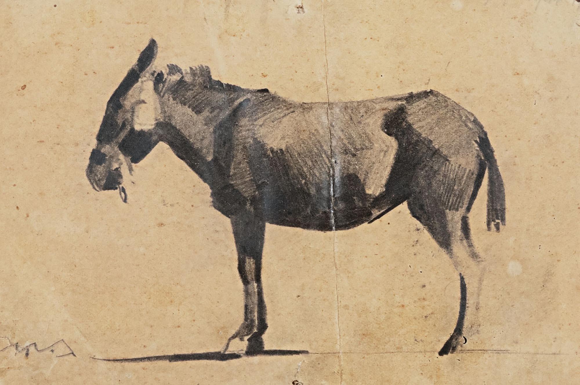 α) Νικηφόρος Λύτρας (1832-1904), β) Νικόλαος Λύτρας (1883-1927)